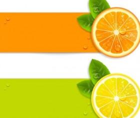 Orange and Lemon vector banners