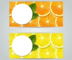 Oranges with lemon slice vector banner