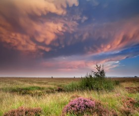 Red Clouds and Prairie Background Stock Photo