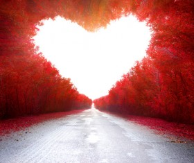 Road with red heart-shaped maple leaf