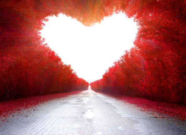 Road with red heart shaped maple leaf