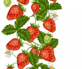 Strawberries with white flower seamless border vector 01