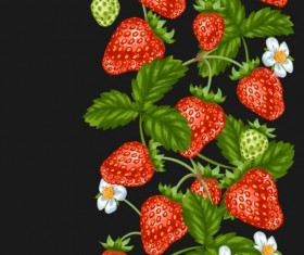 Strawberries with white flower seamless border vector 03