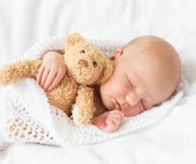 Teddy bear sleeping baby HD picture