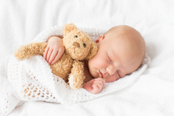 teddy bear sleeping baby hd picture free download