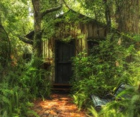 The small house is surrounded by lush vegetation Stock Photo