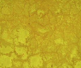Yellow crack texture on the wall Stock Photo