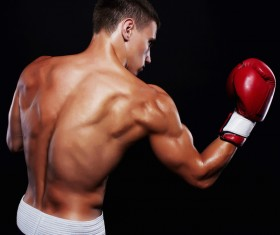 Young boxer's shadow back muscles Stock Photo