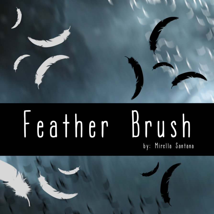 feather brush PS Brushes