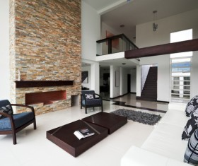 modern sitting room with designer sofas and accessory