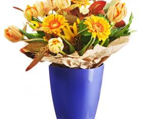 Chrysanthemum on a vase Stock Photo