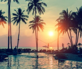 Fantastic sunset with palm trees and resort Stock Photo