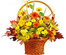 Flower baskets with colorful flowers Stock Photo