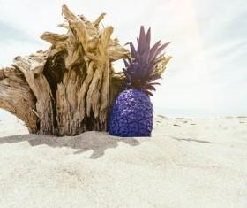 Pineapples-Desert dead tree stump pineapple