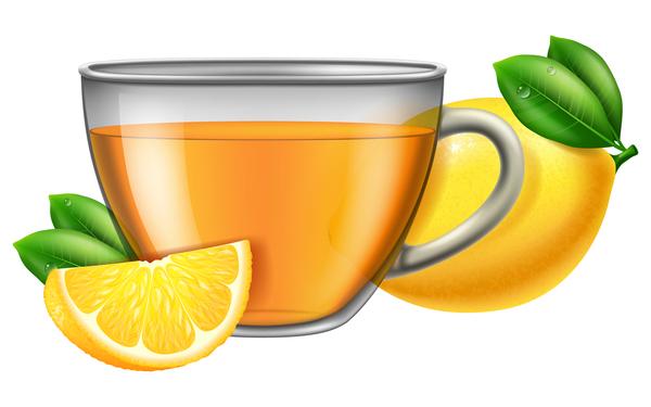 Tea lemon with glass cup vector
