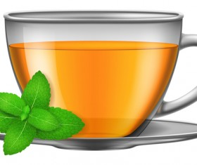 Tea mint with glass cup vector