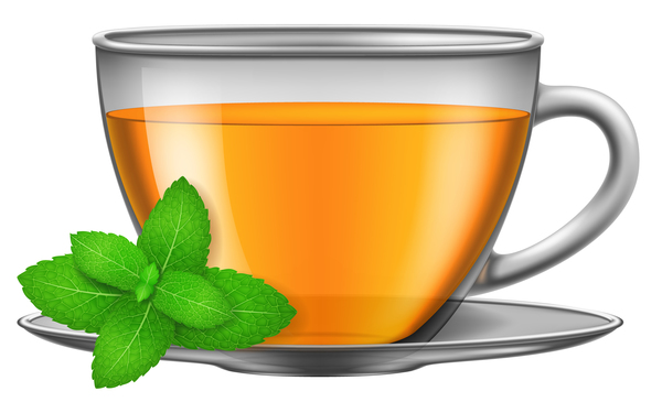 tea mint with glass cup vector free download tea mint with glass cup vector free