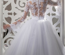 White wedding young charming bride Stock Photo 01