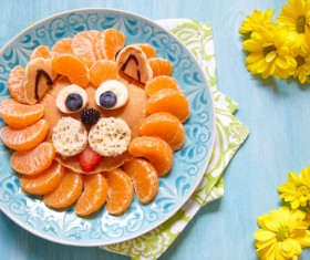 All kinds of animal food decorative surface HD picture 14