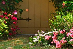 Beautiful garden banners HD pictures