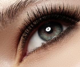 Beautiful woman with long eyelashes in black eyes Stock Photo