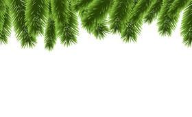 Christmas pine branches borders decor vector 02