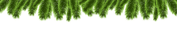 Christmas Branch Vector.Christmas Pine Branches Borders Decor Vector 02 Free Download