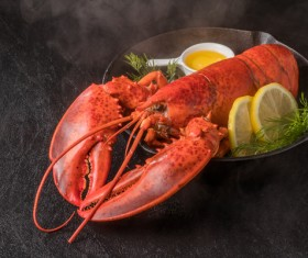 Delicious lobster with lemon spices Stock Photo 01