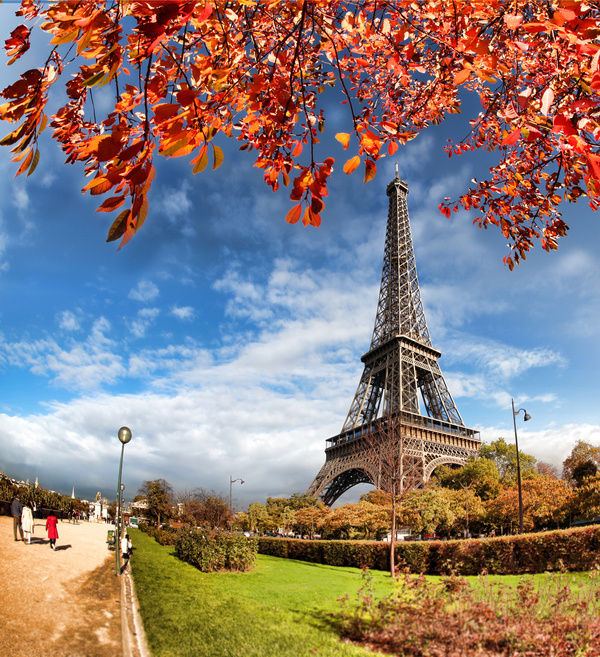 Eiffel Tower With Autumn Leaves In Paris Stock Photo 08
