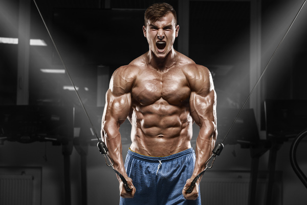 fitness man hd picture 07 free download
