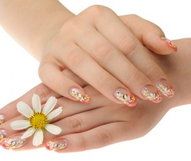 Flower nail HD picture
