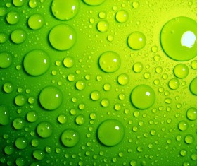 Fresh green water droplets HD picture