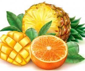 Pineapple mango orange vector