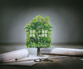 Tree house with drawings Stock Photo