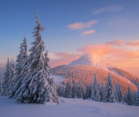 Winter landscape with A dawn in mountains Stock Photo 16