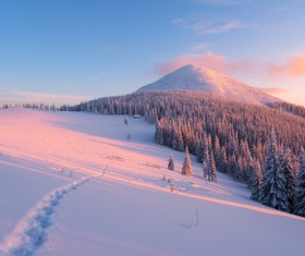 Winter landscape with A dawn in mountains Stock Photo 20