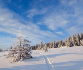 Winter landscape with A dawn in mountains Stock Photo 25