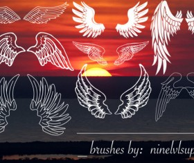 8 Wings photoshop brushes