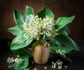Beautiful bouquet of flowers and vases Stock Photo