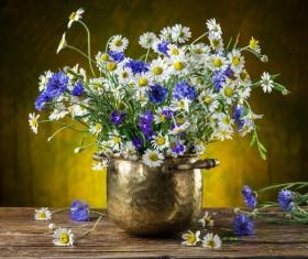 Beautiful flower with vase Stock Photo 01