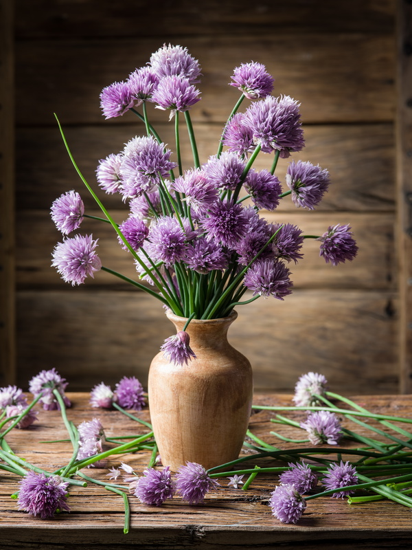 Beautiful Flower With Vase Stock Photo 02 Flowers Stock Photo Free Download