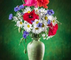 Beautiful flower with vase Stock Photo 03