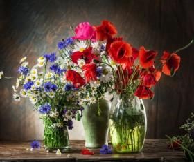 Beautiful flower with vase Stock Photo 04