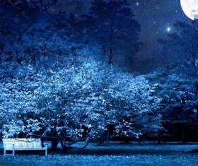 Beautiful night scenery Stock Photo