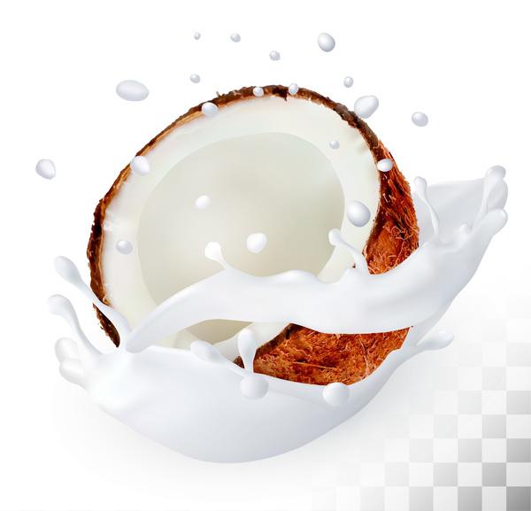 coconut with splash milk vector free download