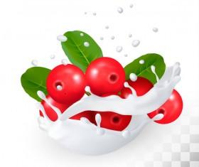 Cranberry with splash milk vector