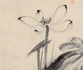 Elegant ink lotus HD picture