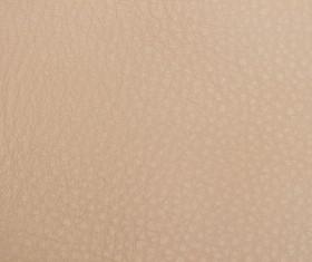 Fine grain leather texture Stock Photo 02