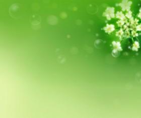 Fresh green flower background Stock Photo