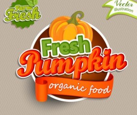 Fresh pumpkin nature product labels vector